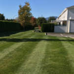 landscape-and-property-maintenance (8)